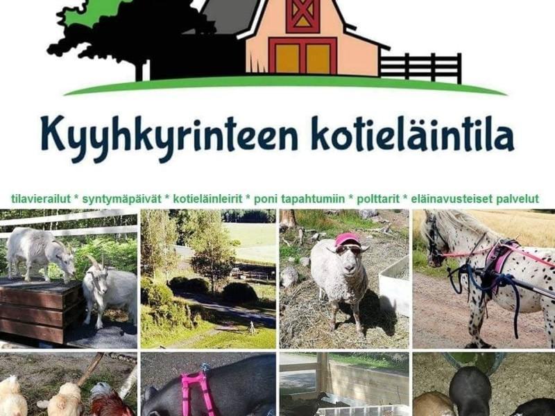Kyyhkyrinteen kotieläintilan mainos
