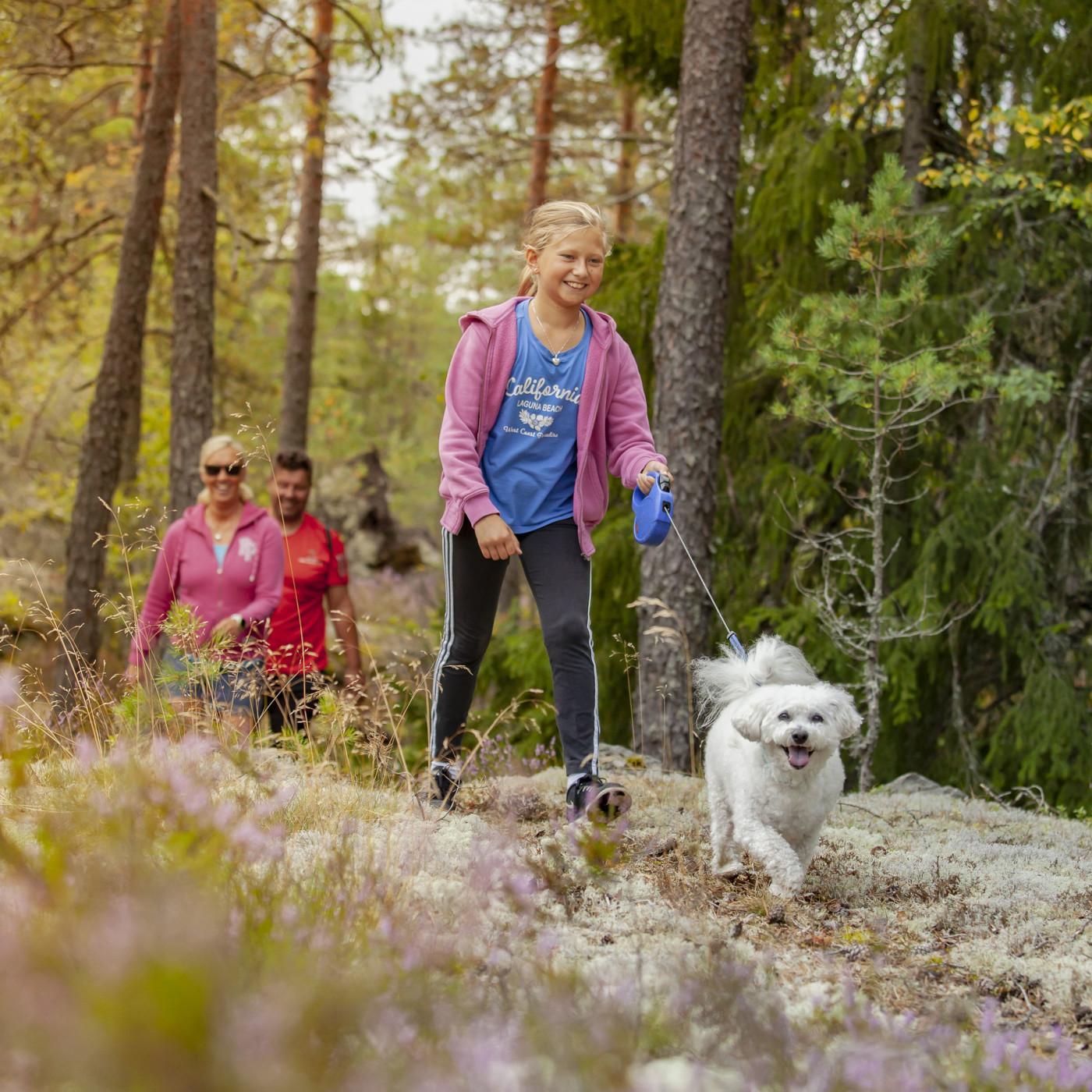Tyttö taluttaa koiraa metsäpolulla.