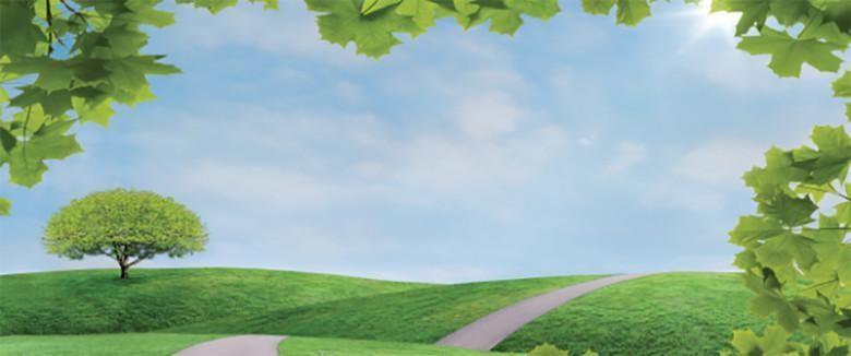 Maisemakuvassa vihreää ruohoa, polku ja vehreä lehtipuu kukkulalla.